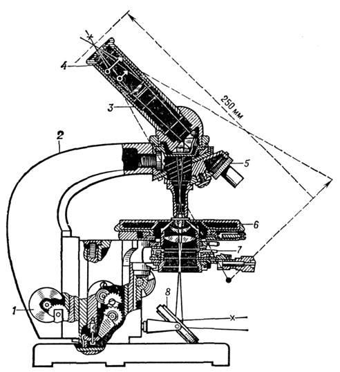 микроскопа и ход лучей: 1