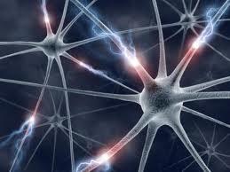 нейросети и искусственный интеллект